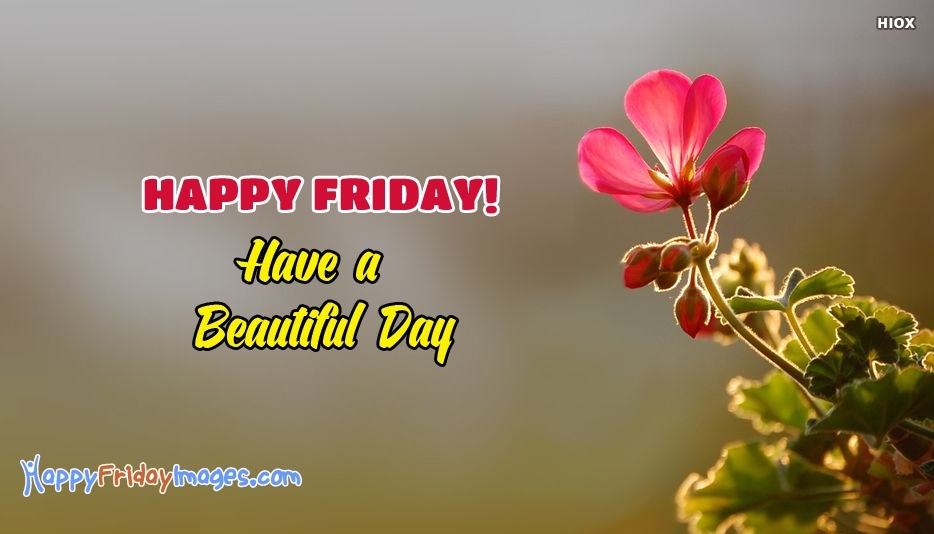 Happy Friday Facebook Status - Happy Friday! Have A Beautiful Day