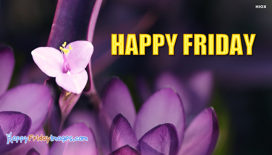 Happy Friday Flowers - Happy Friday Images with Flowers