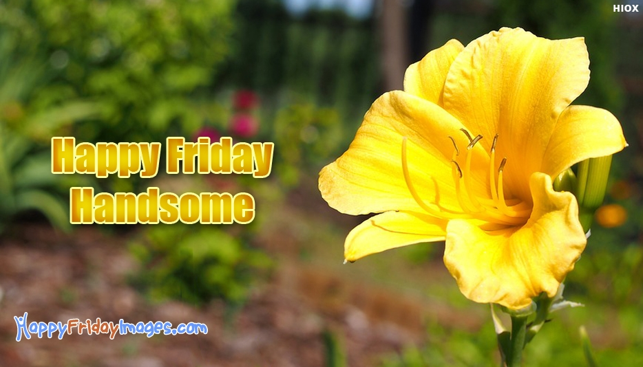 Happy Friday Handsome - Happy Friday Images for Handsome