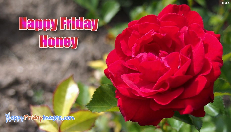 Happy Friday Honey - Happy Friday Images for Girlfriend