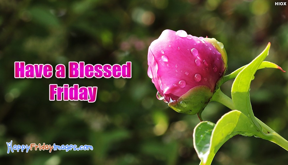 Have A Blessed Friday At Happyfridayimagescom