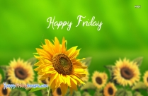 Friday Wishes Hd Images
