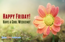 Happy Friday! Have A Cool Weekend!