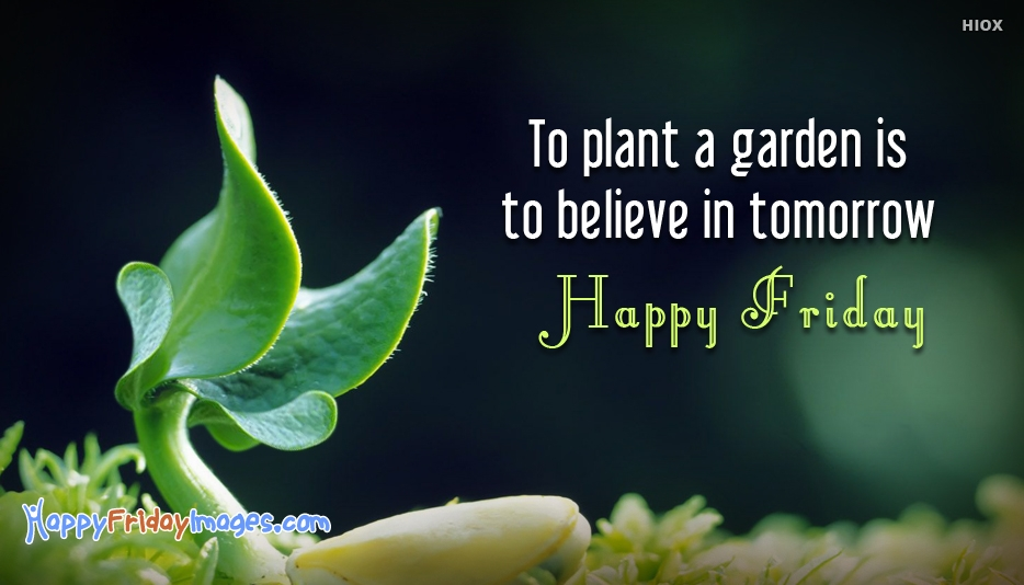 To Plant a Garden is to Believe in Tomorrow. Happy Friday - Inspirational Happy Friday Quotes with Images